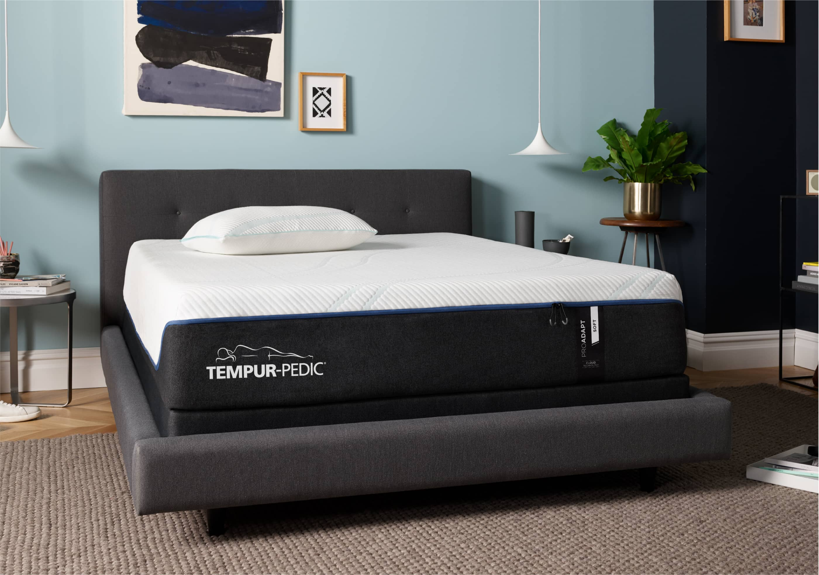 TEMPUR-ProAdapt™ Cover Image
